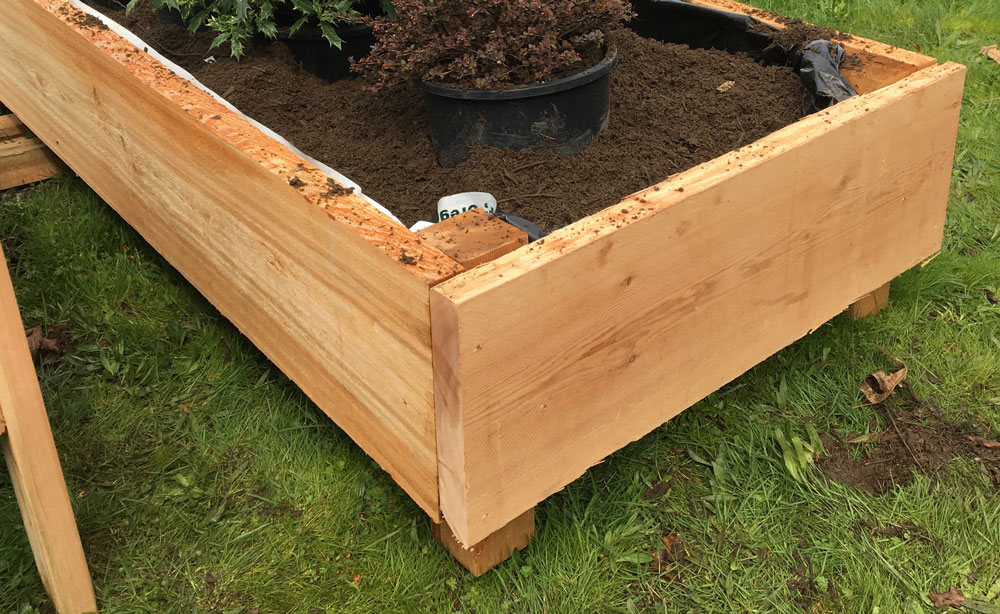 raised bed garden box